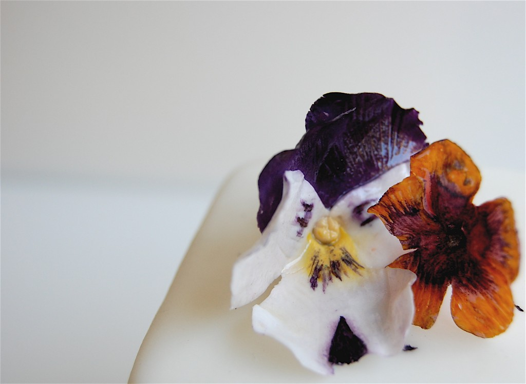 Pansies-Magpie's Cake-Camille Styles Events