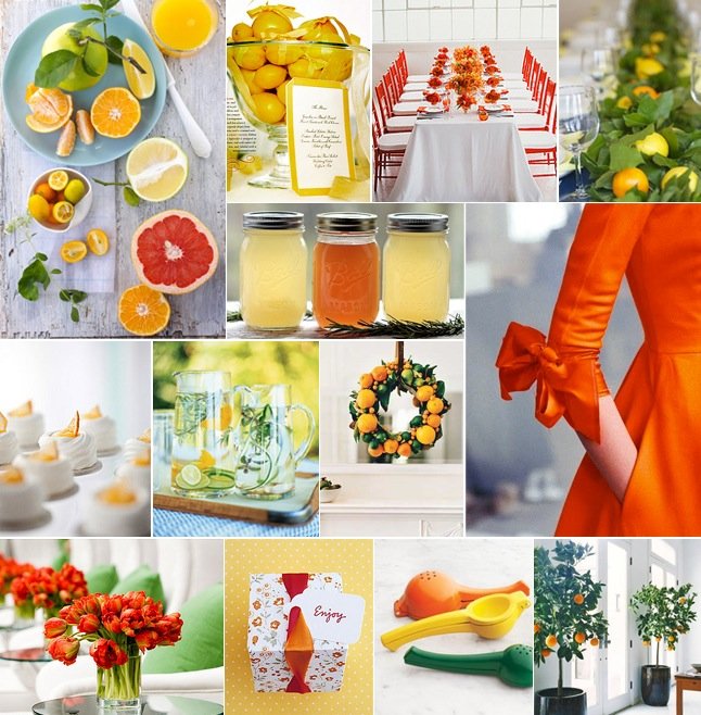 Winter Citrus Healthy Brunch Ideas-Tribeza-Camille Styles